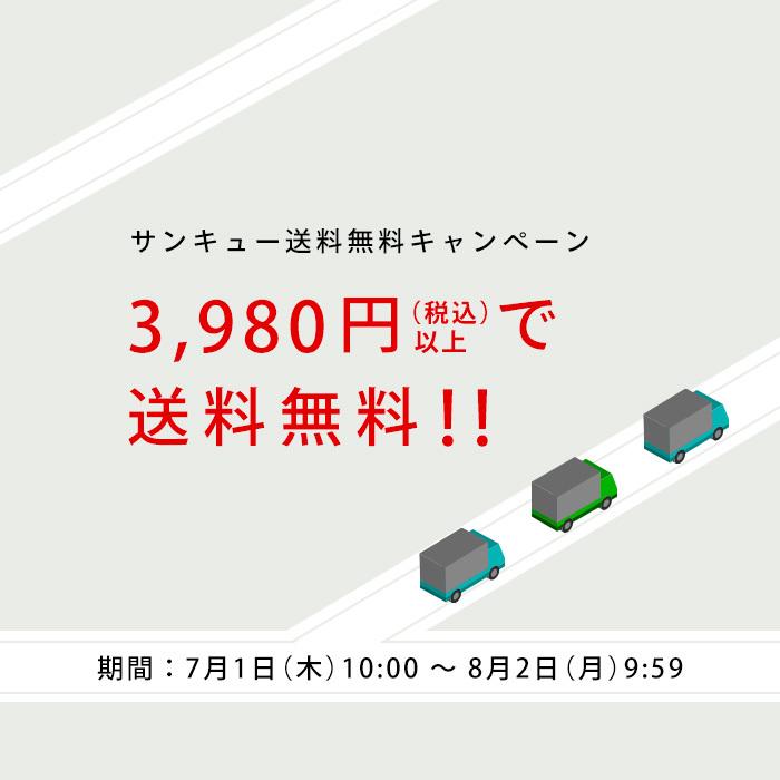 【サンキュー送料無料キャンペーン】